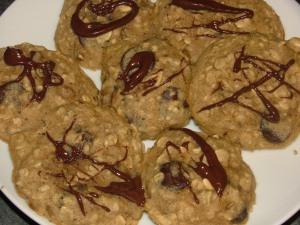 lentil oatmeal cookies